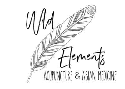 wild elements@2x 100 400x284 1